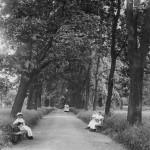 Парк женского института