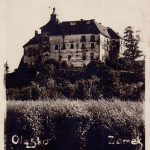 olesko zamek2